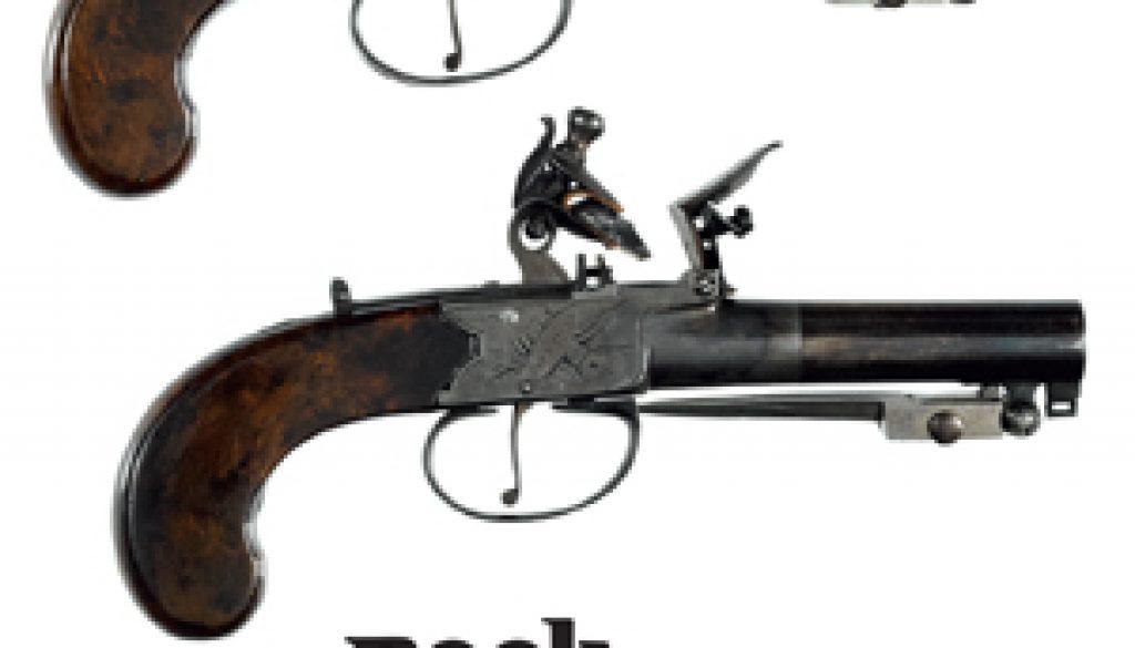 2017 05 20 Firearms